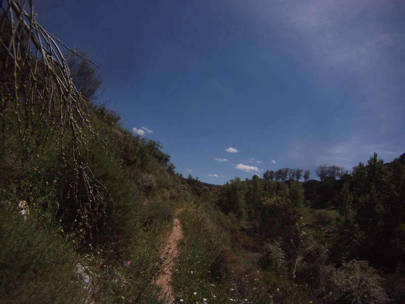 mountainbike trail ronda